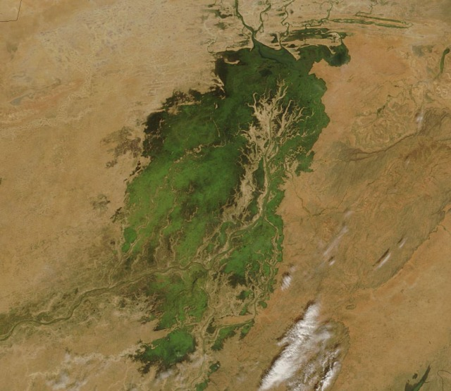 El delta interior del Níger, vía Wiki (Click para agrandar)