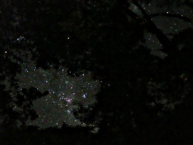 Eta Carinae asomando por el este entre los árboles; unos Cohihues en el lago Traful. Me llevé un par de hamacas paraguayas en el auto y pude dormir con esta vista a la noche.