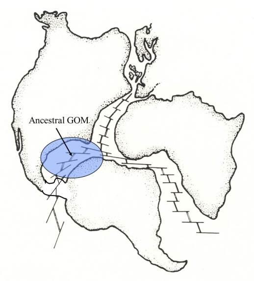 Apertura del Atlántico y la creación del GOM (Click para agrandar)