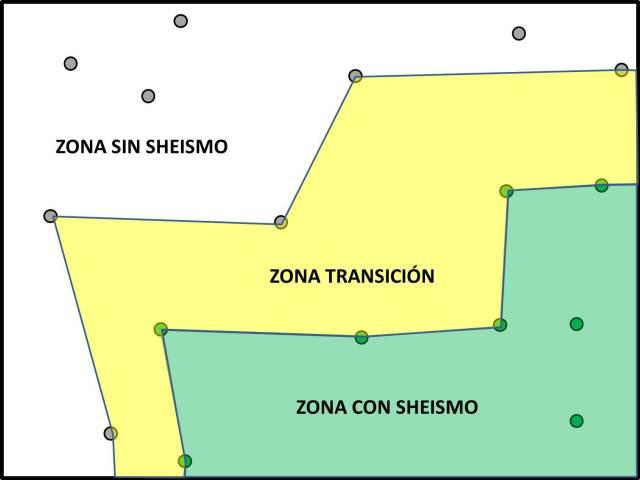 Sheismo2