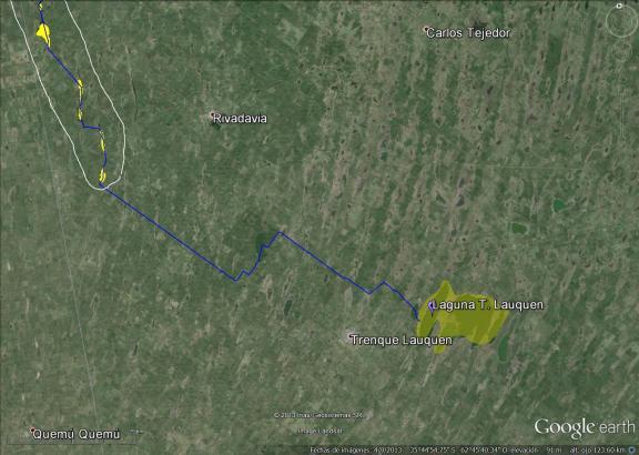 En amarillo, la laguna de Trenque Lauquen. En azul, el canal del río Quinto