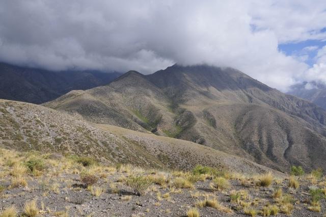 Cerro Castaño_