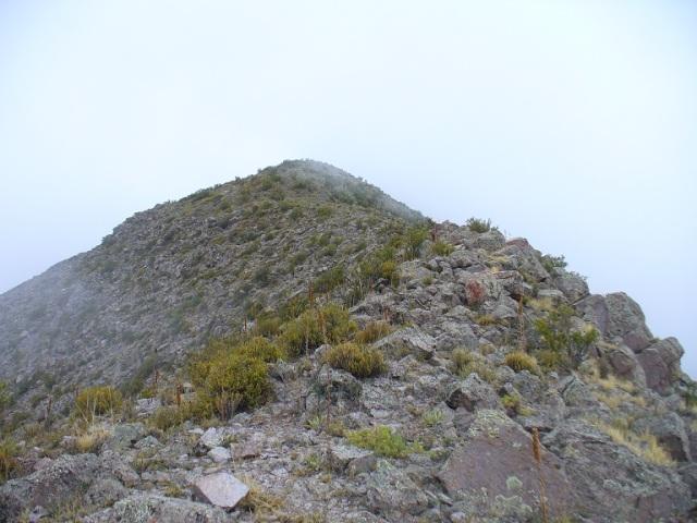 Cerro_Castaño