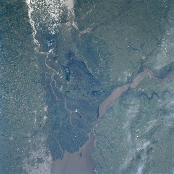 Delta río Paraná