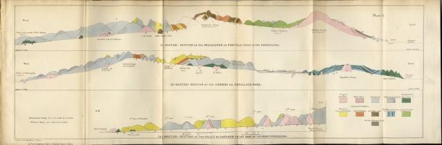 Darwin Andes