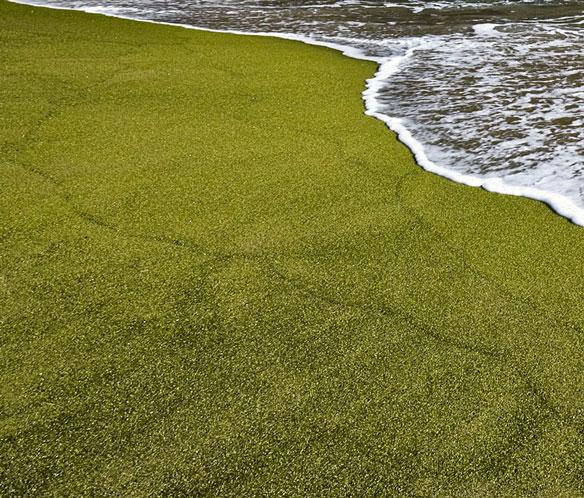 green-sand-2